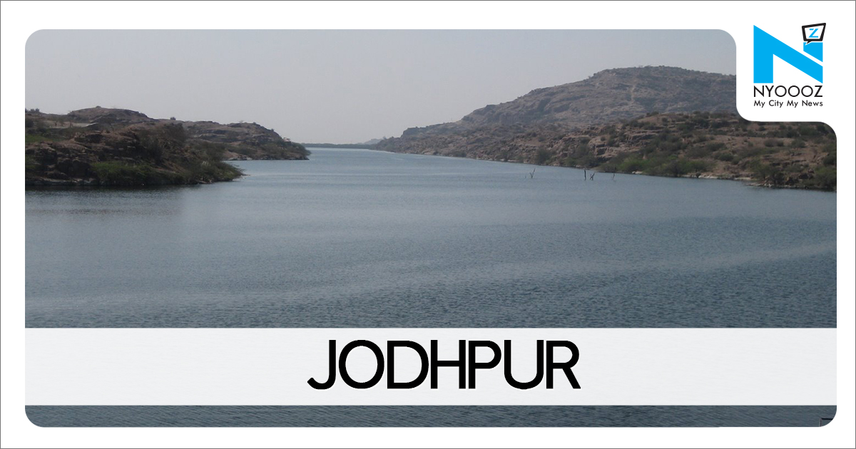 Sodium hydrosulphite found in mawa during raid at a Jodhpur unit