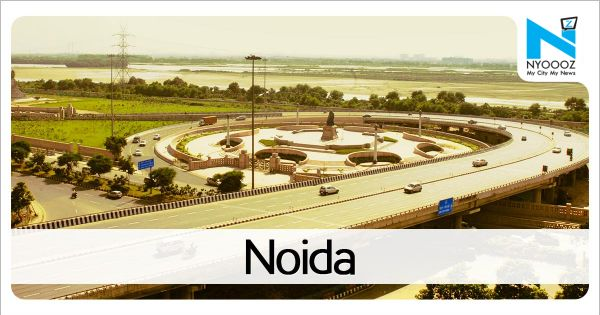 Vertical garden to shift from Noida entry to pillar under elevated road