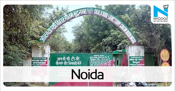 Techie found dead in Noida society, cops suspect suicide