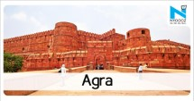 Python brings Agra's busy road to a halt