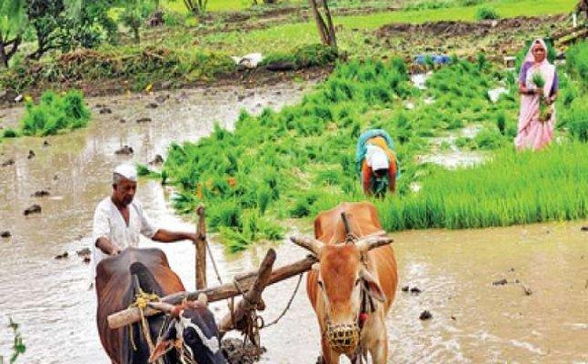 उत्त़राखंड के किसान चाहते हैं करोड़ों का कर्ज हो माफ