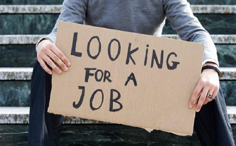 रोजगार का सुनहरा अवसरः लखनऊ में 27 को लगेगा रोजगार मेला