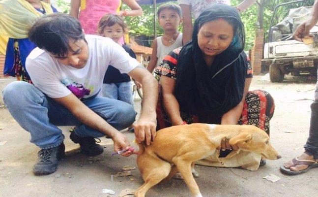 सिटी स्टार: पशुओं की पीड़ा को दूर करते हैं इलाहाबाद के डॉ समर रहमान