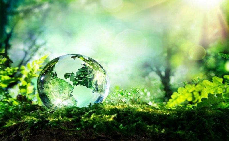 विश्व पर्यावरण दिवस: यूएन ने की विशेष थीम की घोषणा, प्लास्टिक को हटाने के लिए भी होगा काम