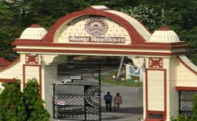 गोरखपुर विश्वविद्यालय में असिस्टेंट प्रोफेसर की हर सीट के लिए हैं 50 दावेदार, संघर्ष है कड़ा