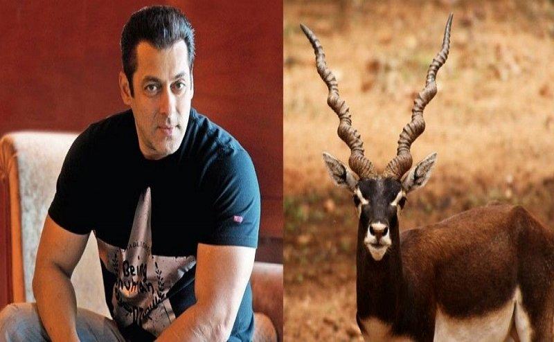 काले हिरण शिकार मामले में सलमान खान को कोर्ट से बड़ी राहत, अब इस मामले में नहीं होगा केस दर्ज