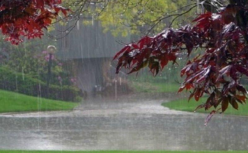 MONSOON UPDATE:  20 जून के बाद इन शहरों में तेज बारिश होने की है संभावना