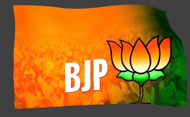 BJP की वेबसाइट पर हैकर्स का हमला! आ रहा है Error का मैसेज