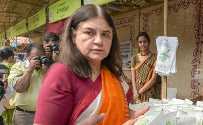 Lok Sabha Election 2019: मेनका गांधी का मायावती पर बड़ा आरोप, बोलीं- 15 करोड़ लेकर बेची हैं टिकट