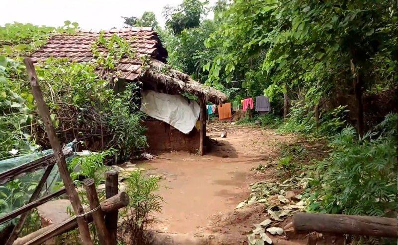 इस गांव में इंटरनेट नहीं होने की वजह से एक महीने से गांव के लोग हैं भूखे