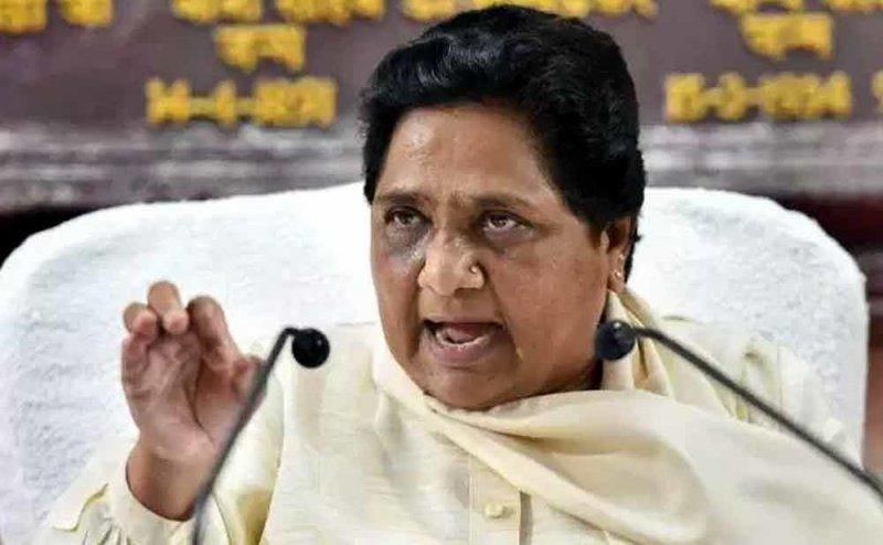 मायावती ने कांग्रेस के Nyay को ठुकराया, कहा- मेरी सरकार बनी तो 6000 रुपए प्रति महीने के बदले दूंगी सरकारी नौकरी
