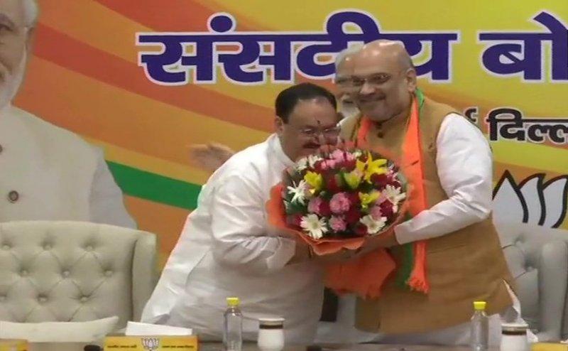 जे पी नड्डा बने BJP के कार्यकारी अध्यक्ष, संसदीय बोर्ड की बैठक में हुआ फैसला