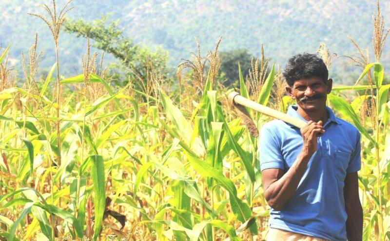 किसानों को बजट में बड़ी सौगात दे सकती है मोदी सरकार! बिना ब्याज के इतने लाख का मिलेगा लोन!