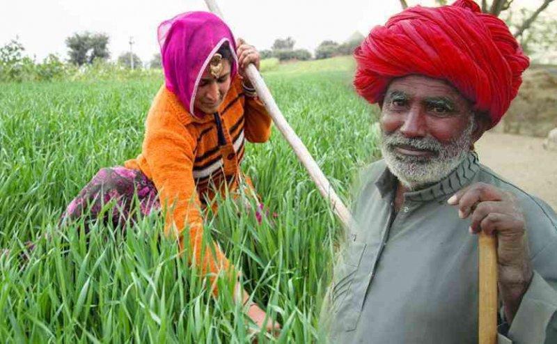 CM गहलोत का किसानों को तोहफा, सालाना इतने हजार रुपये मिलेंगे विशेष अनुदान