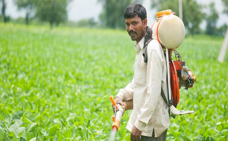 Budget 2019: जीरो बजट खेती पर जोर, 5 सालों में 10 हजार नए किसान उत्पादक संगठन बनाए जाएंगे