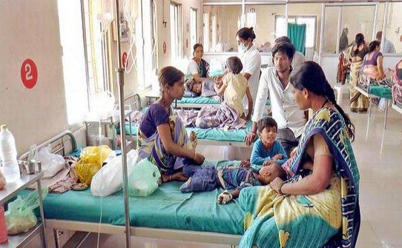 रायगढ़ में तेजी से फैल रहा है डेंगू का डंक, रोजाना दर्जनों मरीज अस्पतालों में हो रहे भर्ती