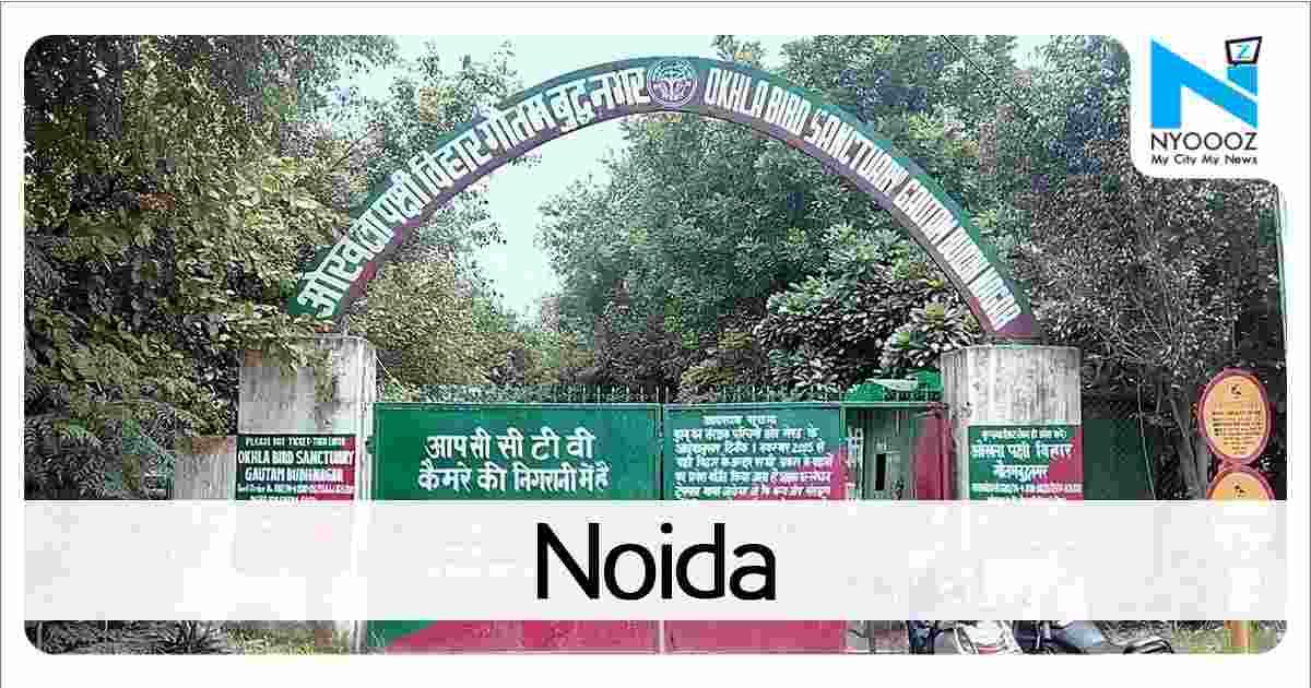 Meet Greater Noida Girls Women Seeking Men Greater Noida Free Dating Site