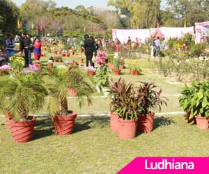 Kamla, Harpreet to lead Punjab baseball teams