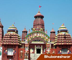 Nine Odisha districts get new collectors