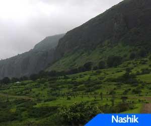 NMC's Navaratra stall auction goes wrong