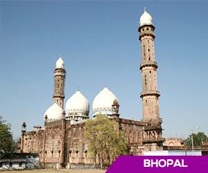 Obese Madhya Pradesh inspector leaves for Mumbai to undergo check-up