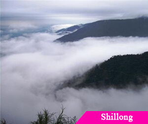 Shillong hoteliers ready for new tax era