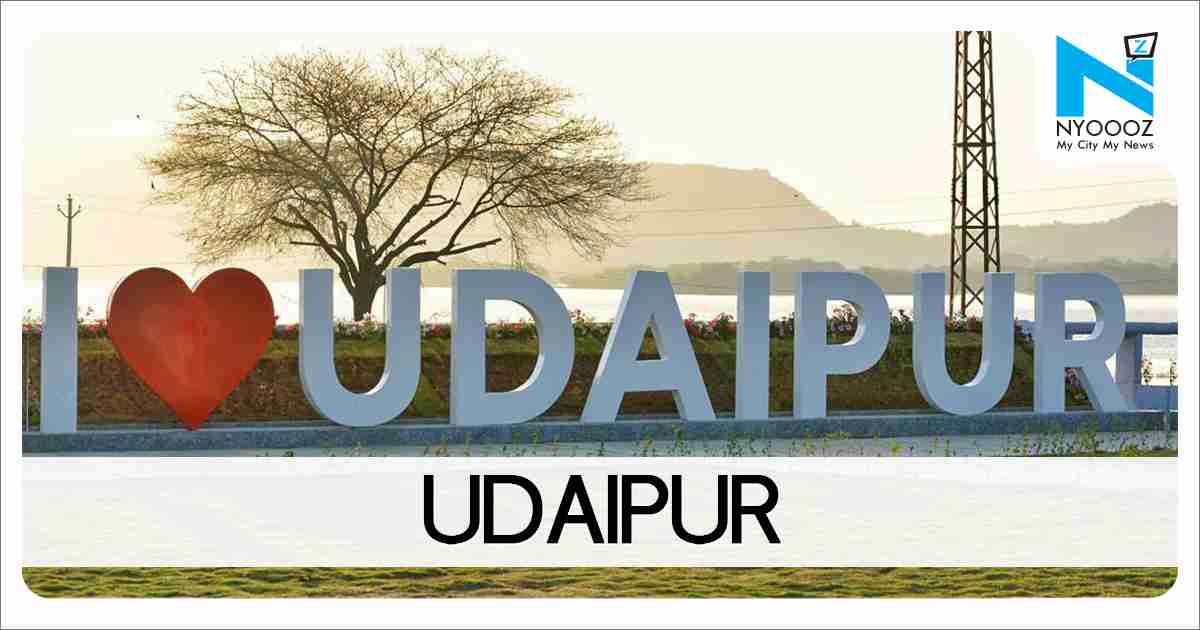 Woman delivers on road in Udaipur, Health minister orders probe