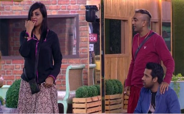 Bigg Boss 11: Akash suggests Arshi to show her cleavage