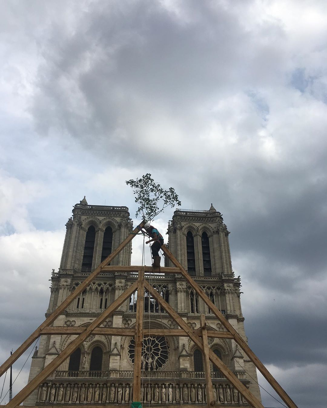 Carpenters Without Borders recreate Notre Dame in Paris