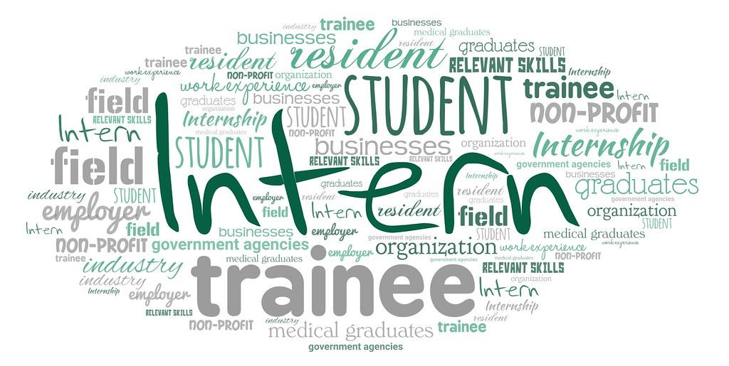 Why these mandatory internships essential to hone employability skills?