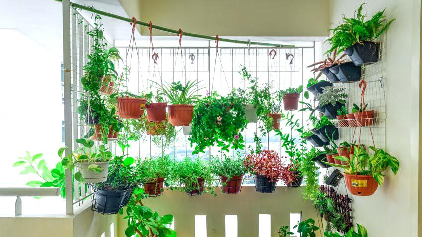 4 ways to include greenery in your house