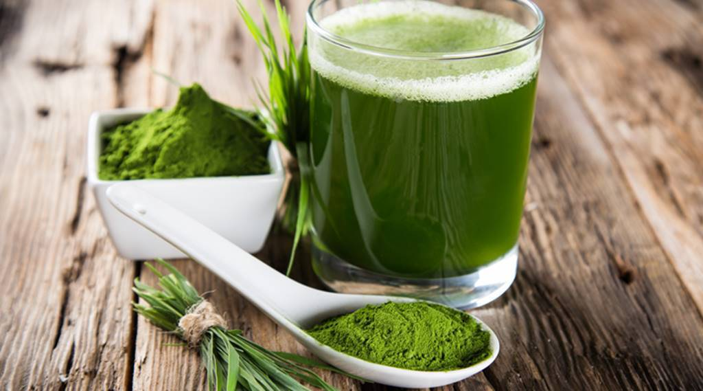 For building hemoglobin and improving immunity: here's why you should include wheatgrass in your diet