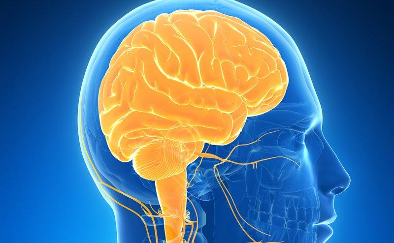 ALERT: Covid19 leading to Shrinking of Brain