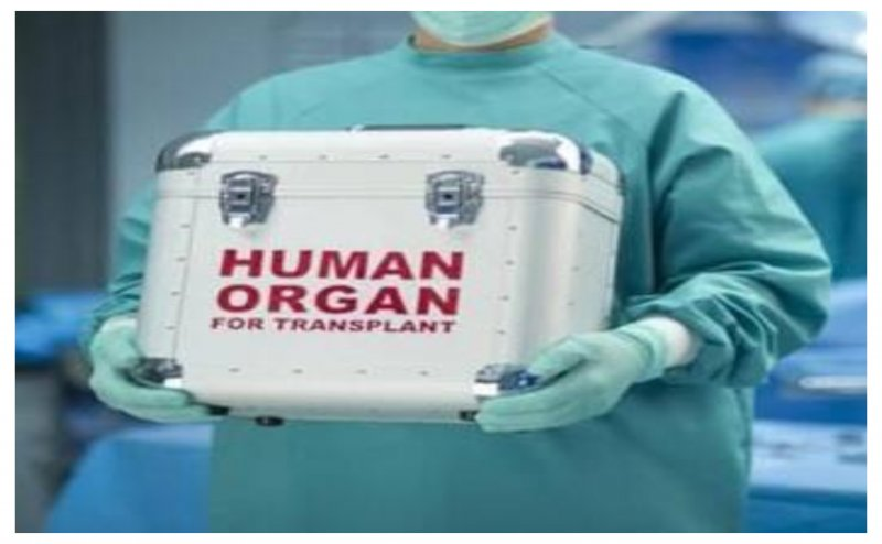 Organs of brain dead man donated to three patients