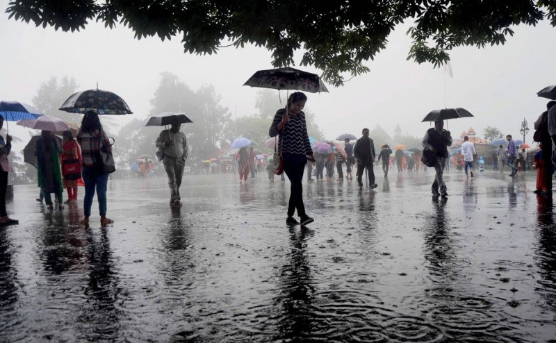 IMD issues yellow warning for 12 Odisha districts, heavy rains and thunderstorms predicted