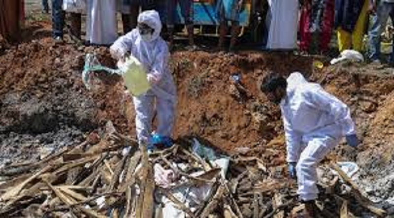 Bird flu: Over 5,000 infected birds culled in Maharashtra's Pune