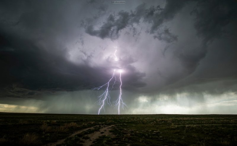 Lightning strikes claim 8 lives in 3 districts of Odisha, 8 critically injured