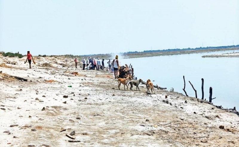 Stop ritual of dumping bodies in rivers, UP government directs officials