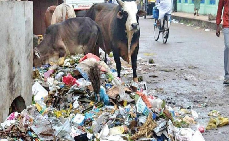 Educational hub surrounded with garbage heap