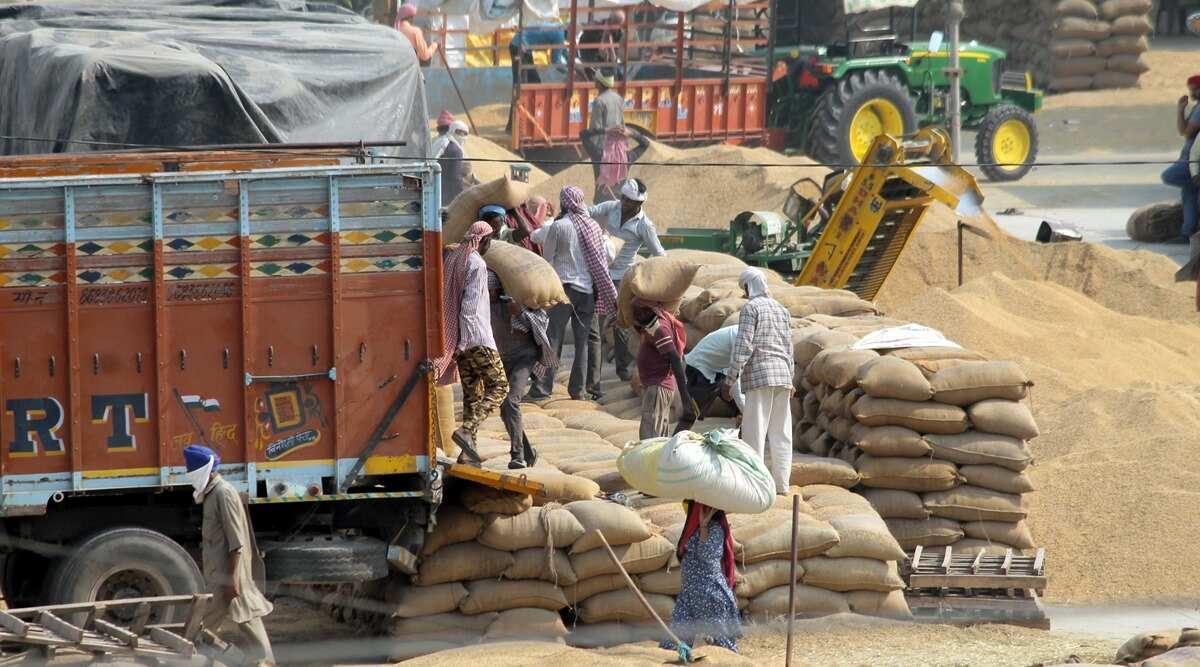 Odisha govt begins reviewing paddy procurement after irregularity claims