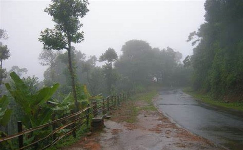 Relief and destruction, Vadodara pre-monsoon rain